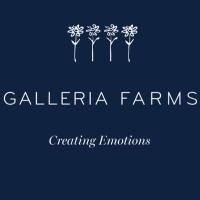 Galleria Farms