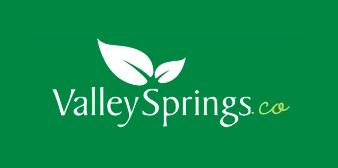 Valley Springs