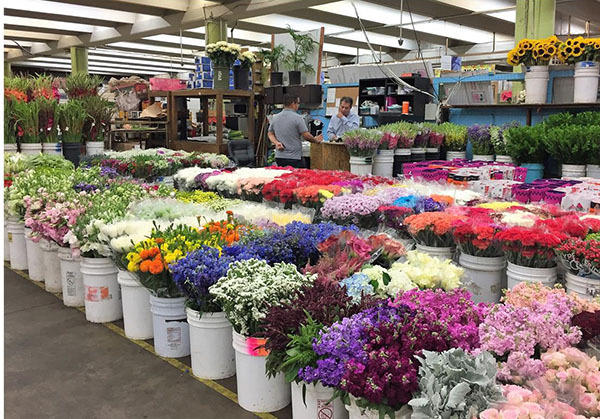 Florists Supply Blog