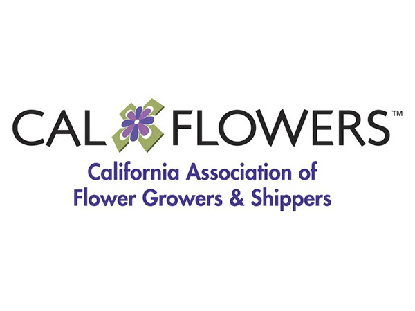 Cal Flowers Logo B Alt